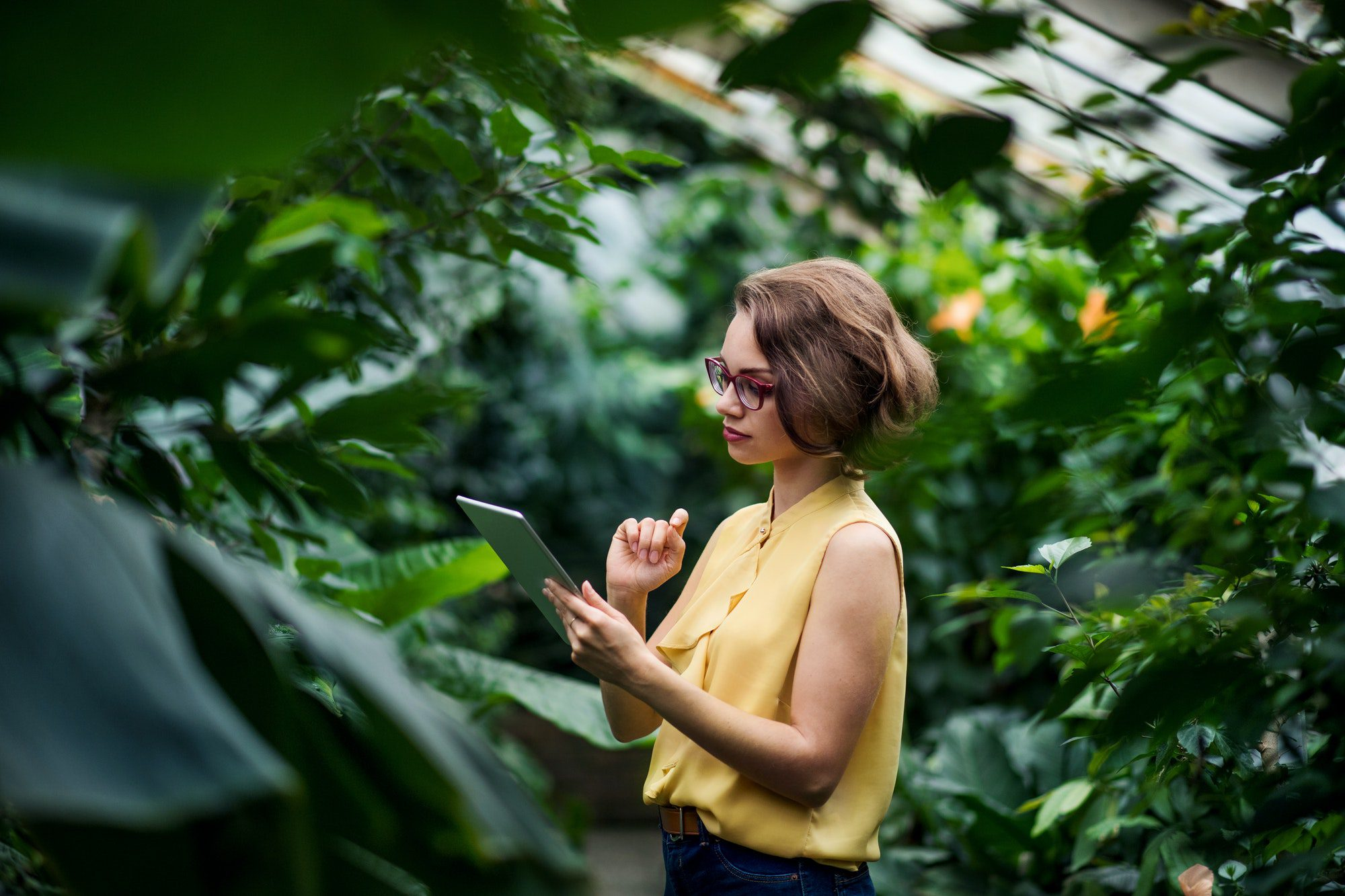 Young woman standing in greenhouse in botanical garden, using tablet